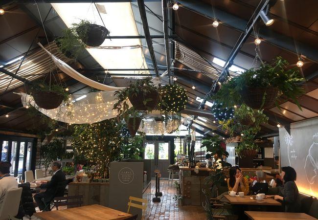 緑に囲まれたレストラン