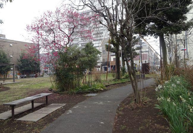 北口の貴重な公園。