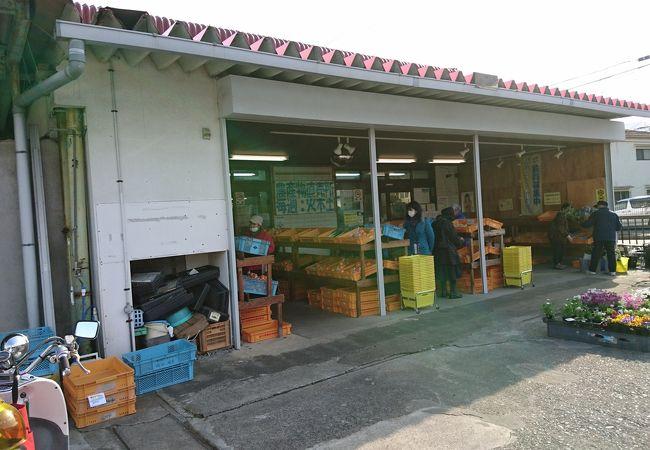 湯河原営農経済センター農産物直売所