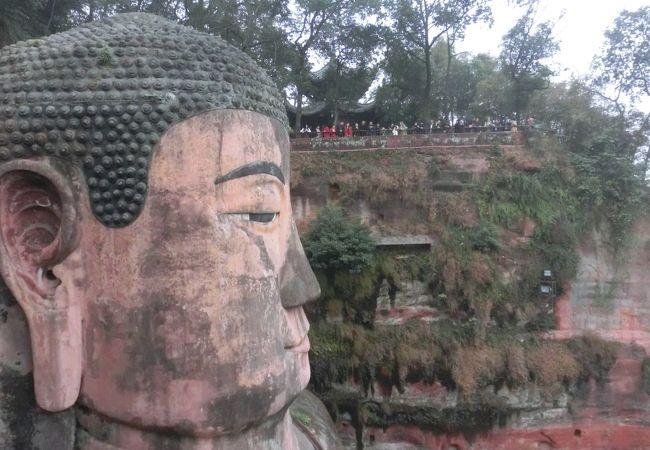 成都から日帰りで楽山大仏を観に行きました
