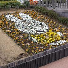 ミッフィーの花壇