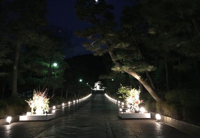 幻想的な雰囲気。寒い京都に温かい淡い灯(^^)