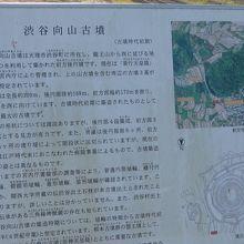 山の辺の道中間過ぎにある巨大前方後円墳