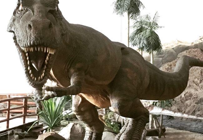 プー ウィアン化石研究センター&恐竜博物館