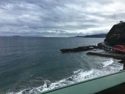 伊豆山温泉 ホテルニューさがみや 写真