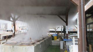 蒸し牡蠣、蒸し野菜がおいしかった