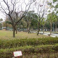 ホテル前の林森公園