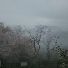 瀬戸内海は霧の中
