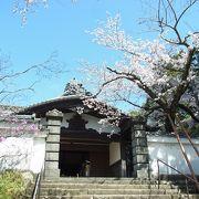 桜の時期は最高ですね