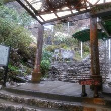 入口迄の階段です。