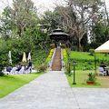 綺麗な庭とプール。スーパーと日本語OKの土産物屋も至近距離に。