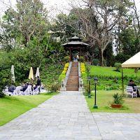 手入れの行き届いた庭とプールはこのホテルの良い点です。