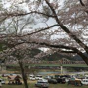 桜の季節が特にオススメです