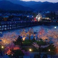 窓から見た夜間の渡月橋と嵐山公園の桜。