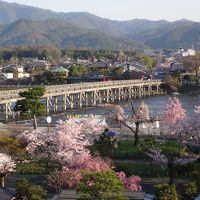 朝日が当たる渡月橋と嵐山公園の桜。