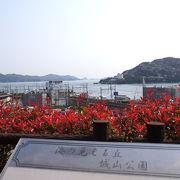 海と桜が綺麗な公園