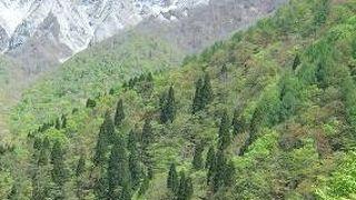 ここから見る大山の南壁の姿が最高です。