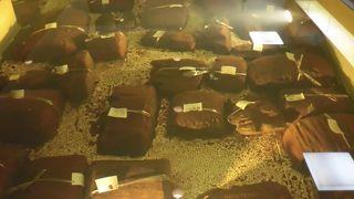 金沢市埋蔵文化財収蔵庫