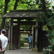 正門から入った時に、この門の前にしだれ桜があります。