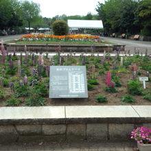 豊富な植物と芝生の広場、子供達も沢山いました