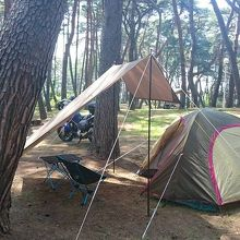 大洗観光のベースキャンプとしてお勧め