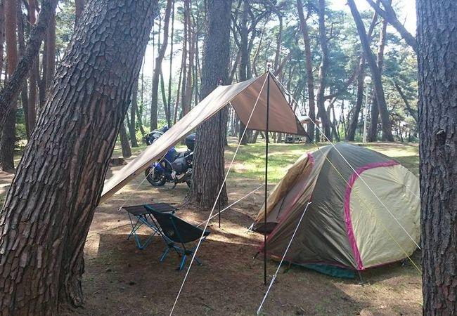 場 大洗 キャンプ