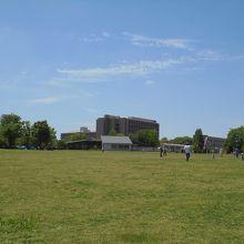 子どもの日の芝生広場。奥の茶色の建物は東京外語大