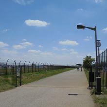 公園の南側へ続くプロムナード