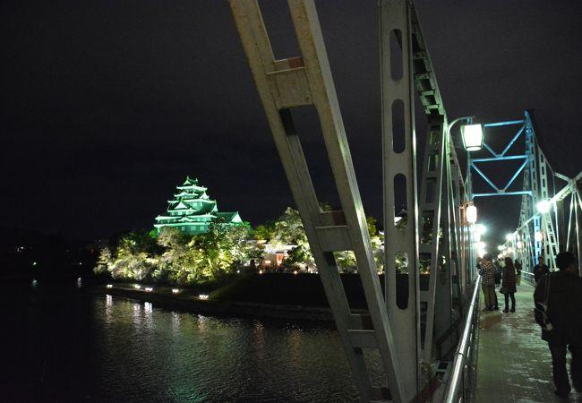 岡山城もあえて昼間と同じ写真を選んでみました