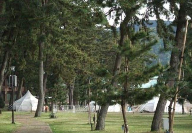 気持ちのよいキャンプ場です。