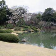 池を一望できる一番のビューポイント