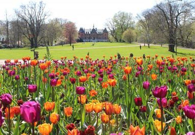 素晴らしい庭園!