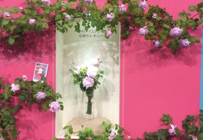 第19回 国際バラとガーデニングショウに行って来ました。