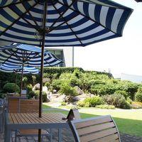 中庭カフェがいい雰囲気。ただし、その場で現金会計が面倒。