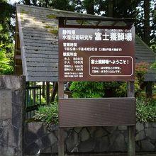 静岡県水産技術研究所富士養鱒場
