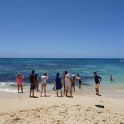 ウミガメに会えると言われているラニアケアビーチ