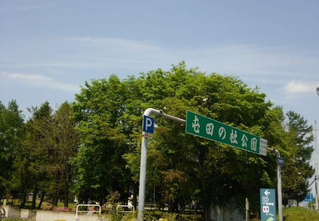 屯田の杜公園