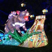 Vivid Sydney 2017 タロンガ動物園ライトアップ