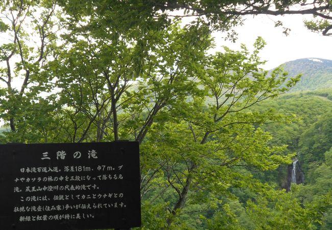 「滝見台」から観ることができます