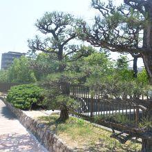 緑の多い遊歩道や児童公園