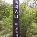 赤城の小尾瀬散歩