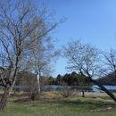 湯の湖 兎島