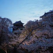 六文銭が見下ろす真田の桜祭り