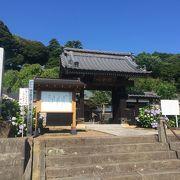 徳川家ゆかりの寺