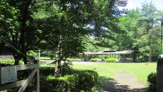 智光山公園野外活動広場