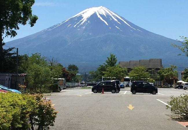 富士お猿の里 河口湖猿まわし劇場