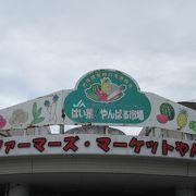 島野菜のデパートでござる。