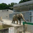 岡崎市東公園小動物園