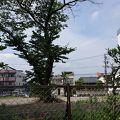 写真:旧加納町役場跡