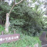 横浜市内にあって山奥の渓流の雰囲気が漂うところ